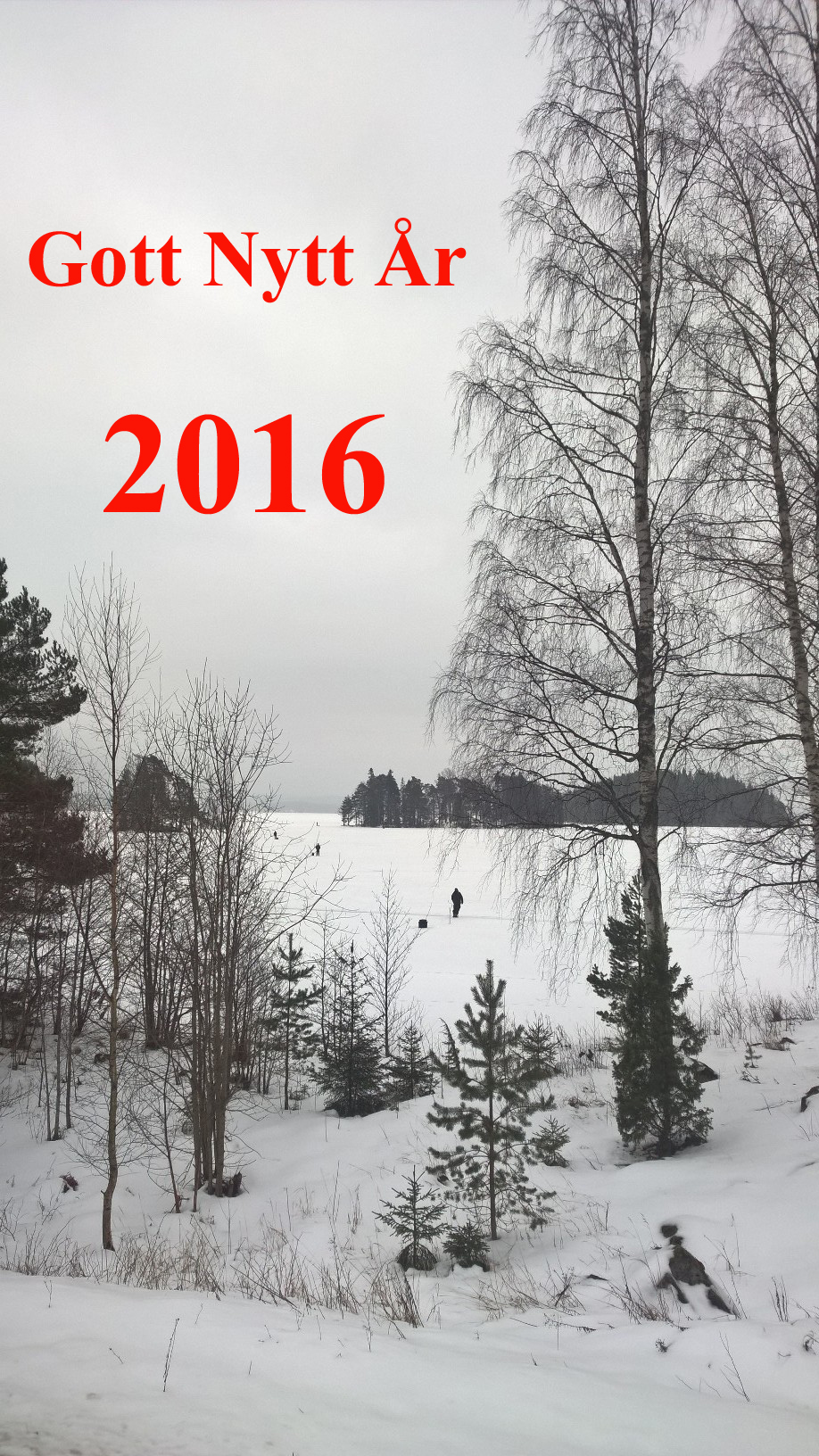 Gott Nytt 3-2016